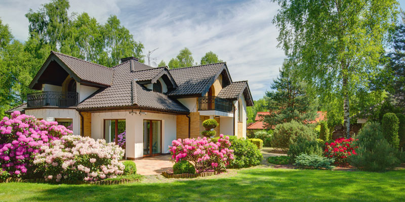 House with great landscaping
