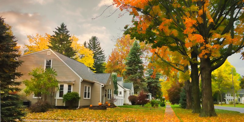 House in beautiful fall landscape with colorful leaves on trees and ground